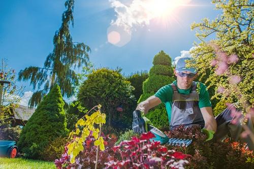 jardinier à Roquebrune-Cap-Martin