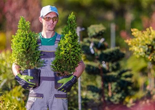 un paysagiste sur Angoulême pour les entreprises